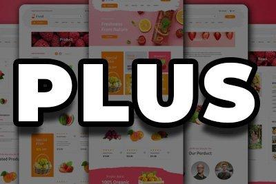 E-Commerce Web Design | Plus Package